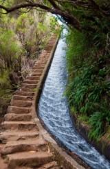 doğa yürüyüş (4)